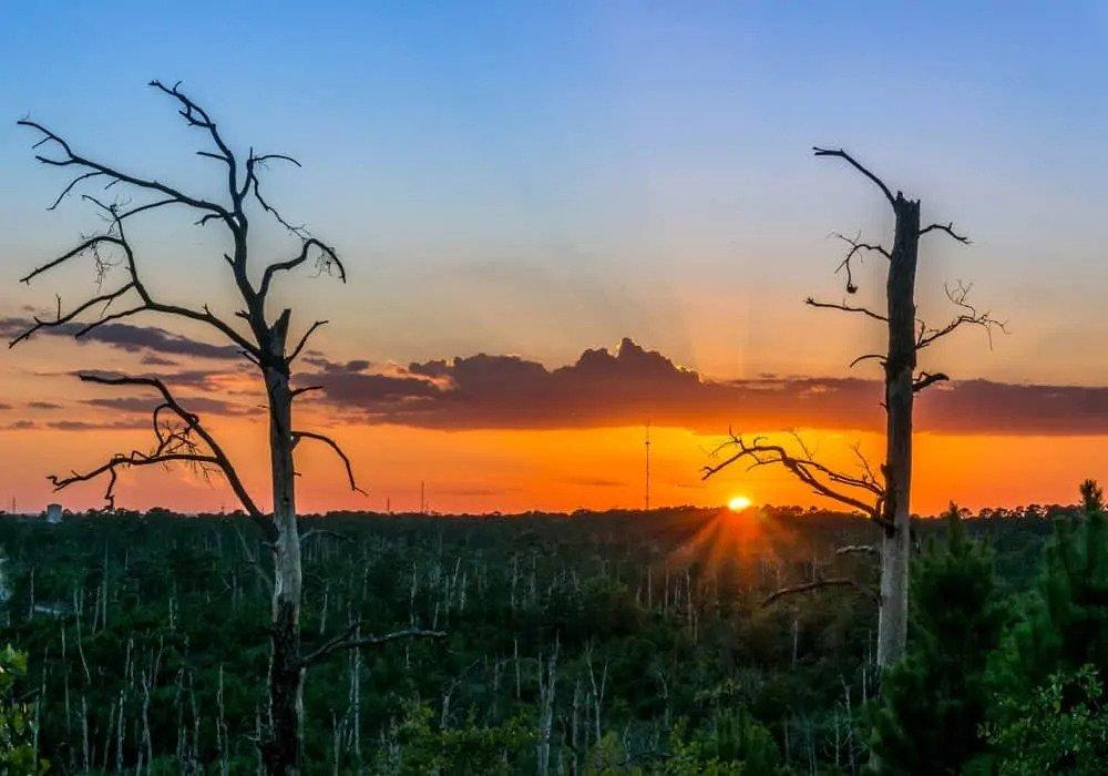 Sunset in Balstrop County