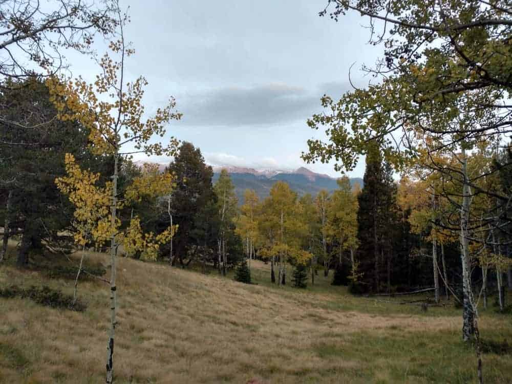 The Mueller State Park is a gorgeous place for hiking or camping. This spot above is a perfect place to watch the sky while being surrounded by the nature.