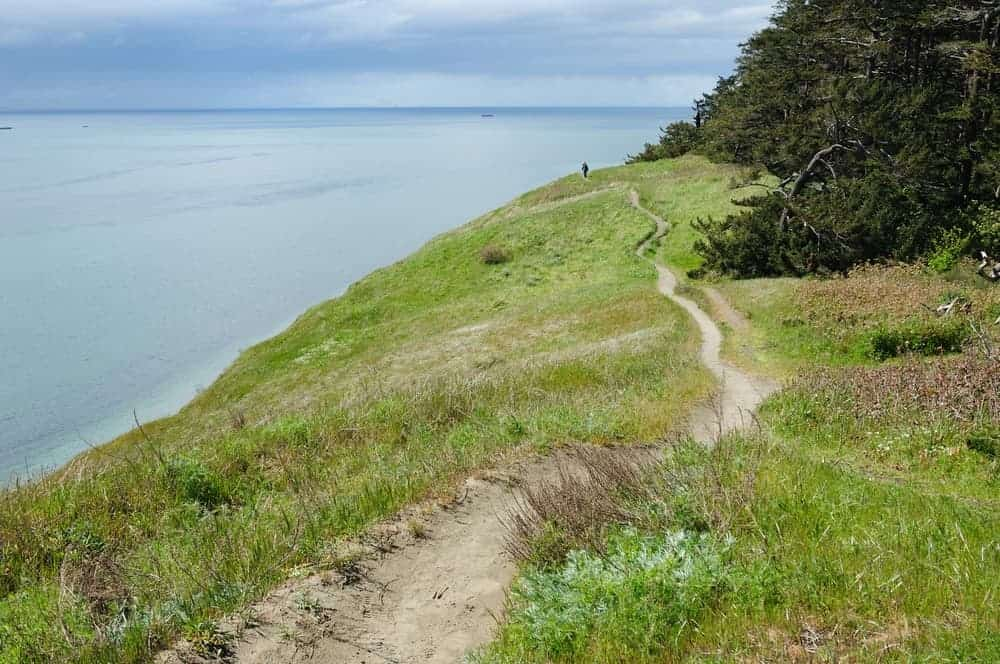 A view of Ebey's Landing Trail.