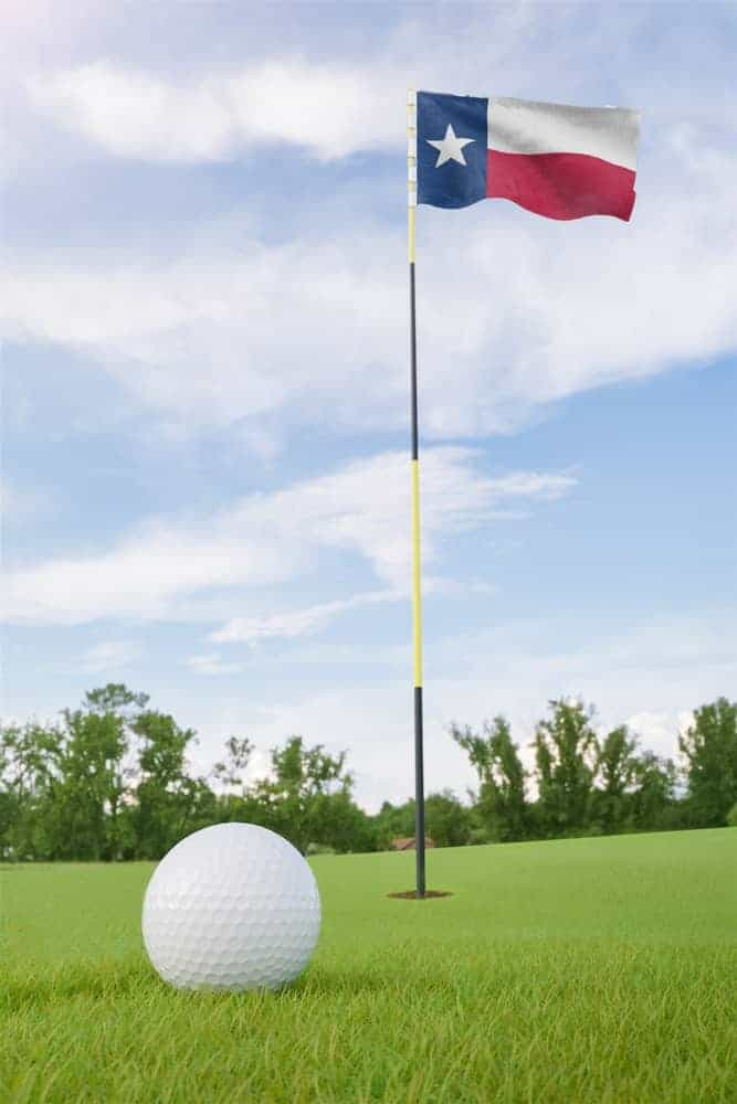 A golf ball at rest on a golf course.