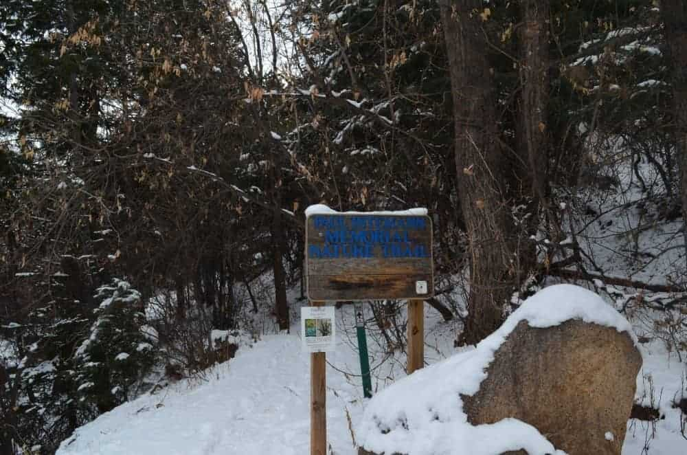 This is the view of the Paul Intemann Memorial Nature Trail entrance near the famous incline.