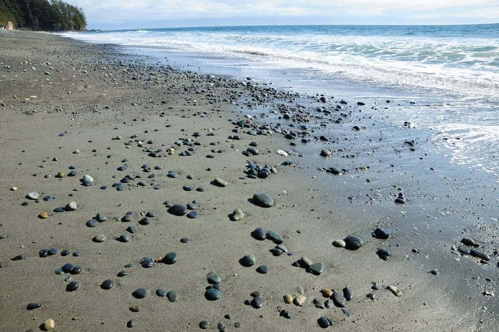 A look at Maxwelton Beach in Whidbey Island.