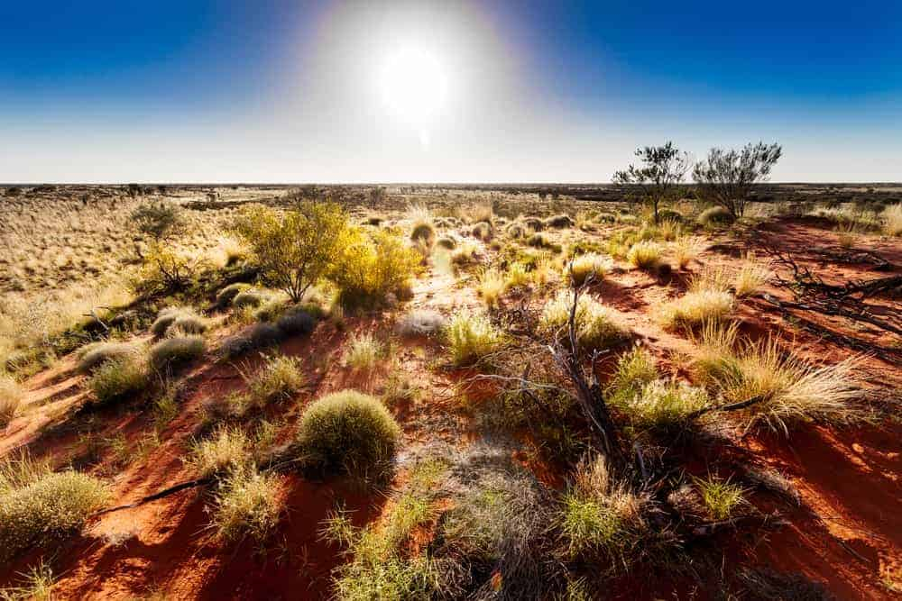 A view of the Australian Outback.