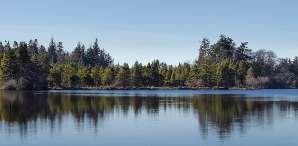 A view of Cranberry Lake.