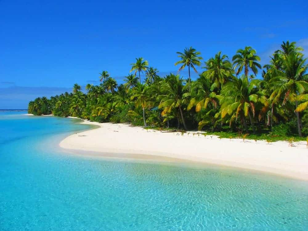 Clear blue waters, white sand, and palm trees on the coast of the Cook Islands.