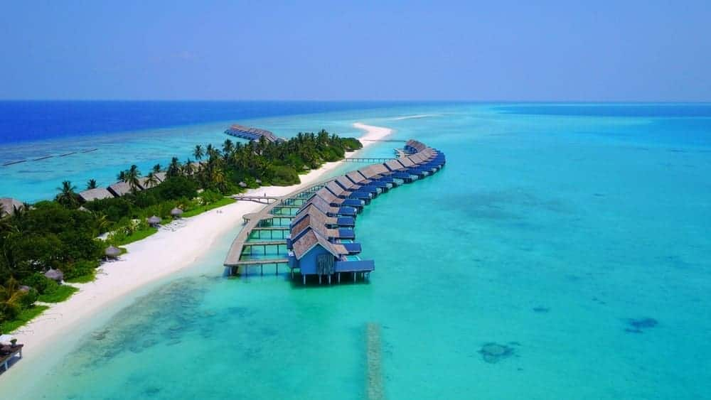 Huts and palm trees on the Maldives island.