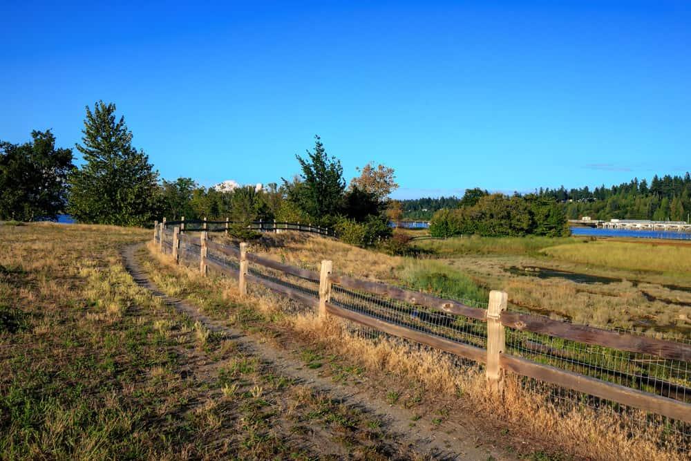 Trail through wetlands in Crescent Beach, Surrey BC