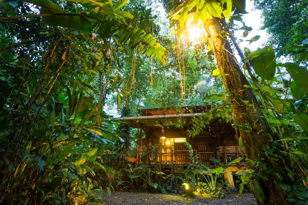 A look at an ecological resort immersed in the middle of a tropical jungle.