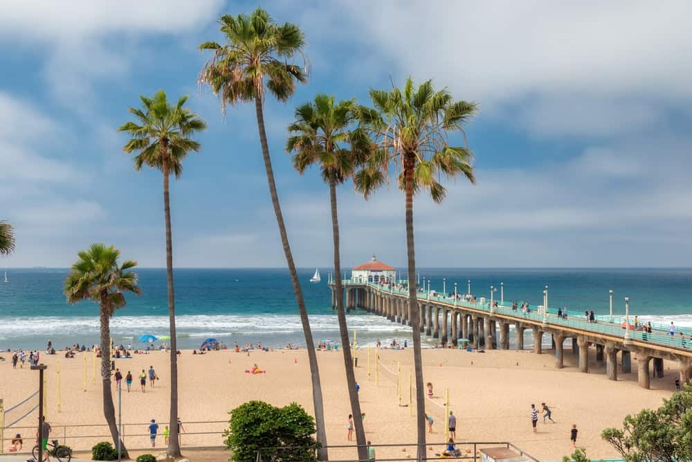 This is a look at the spacious Manhattan beach with tropical trees.