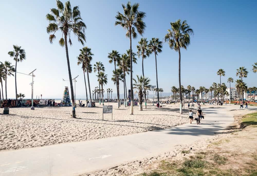 This is the concrete walkway beside the famous Venice Beach in Los Angeles.