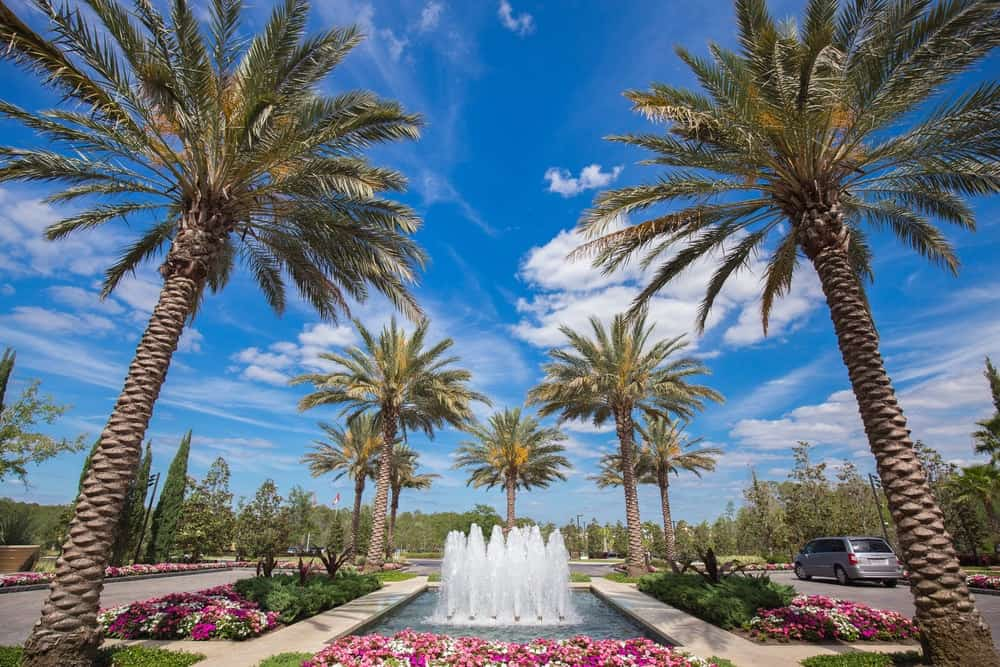 Fountain and palm trees at the Four Seasons Resort Orlando at Walt Disney World® Resort.