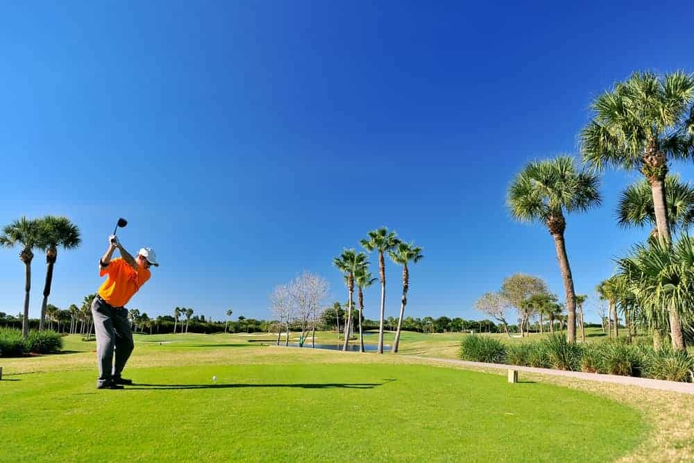 A golfer in a golf course about to swing.