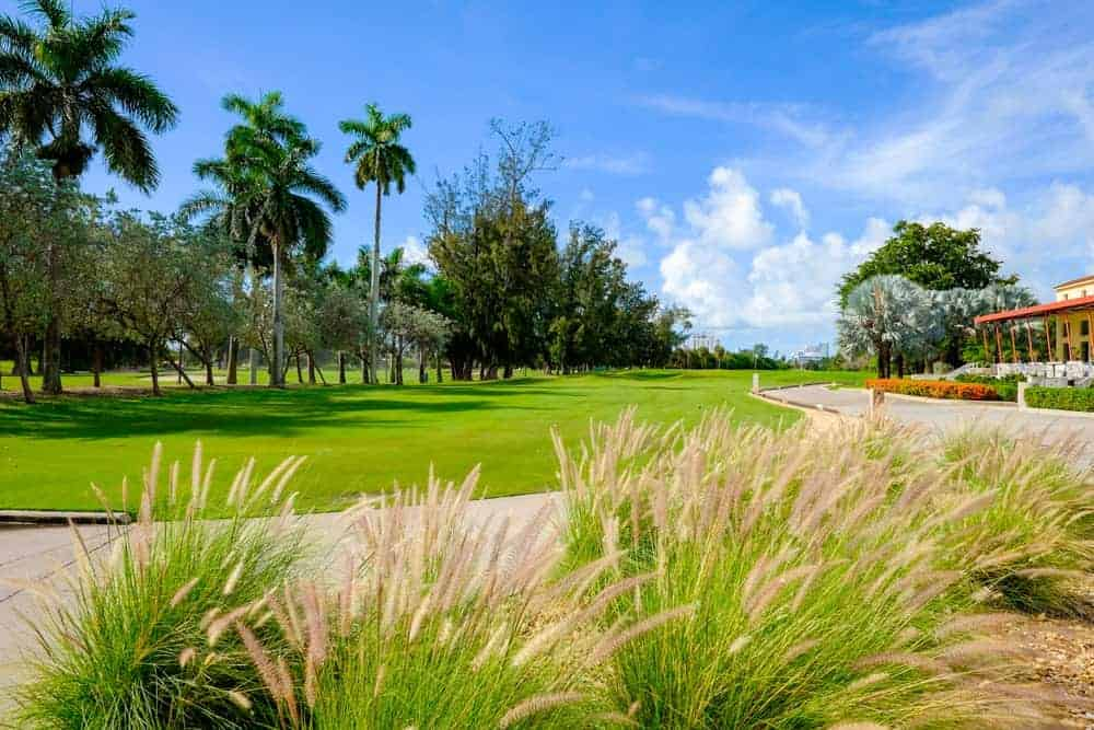 The Royal St. Augustine Club offers a challenging course for golfers who want to improve their games. It also offers a clubhouse and lounge for visitors who enjoy watching than playing.