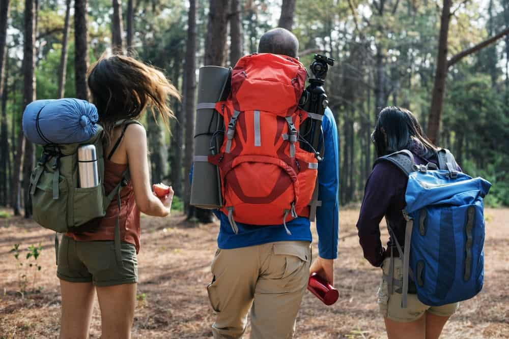 A group of friends on a camping trip carrying camping gear.