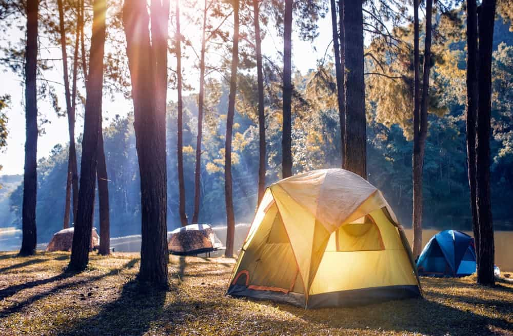 A 4-tent camp setup in the woods by the water.