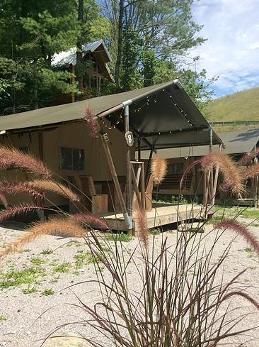 A look at a safari tent inside Camp LeConte.