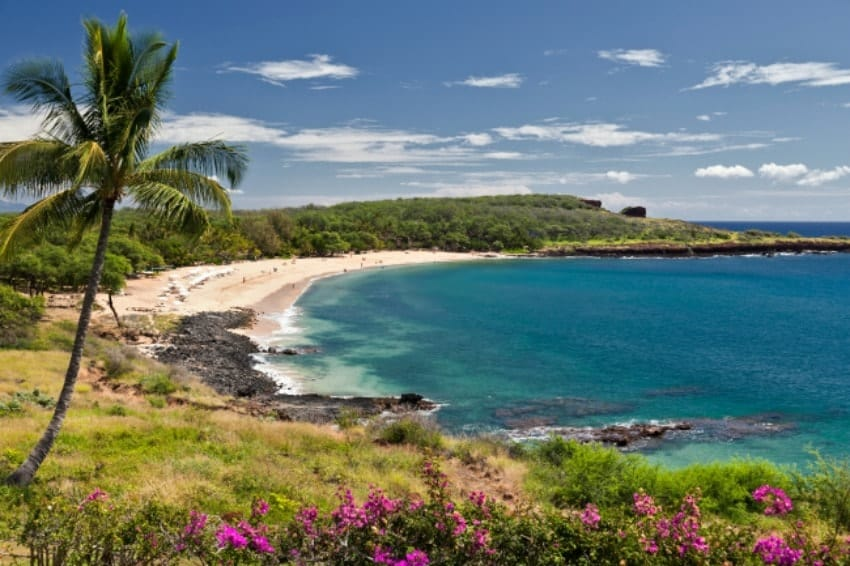 A sweeping overlooking view of of Manele Bay on Lanai Island in Hawaii.