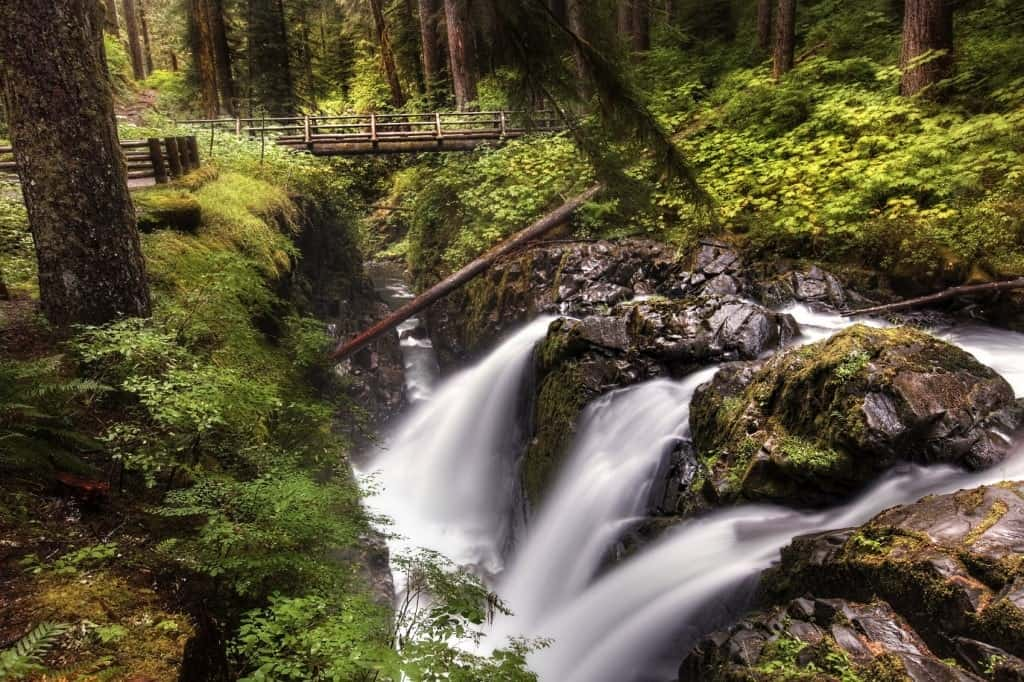 Sol Duc Falls in Olympic National Park with a foot bridge above the falls.
