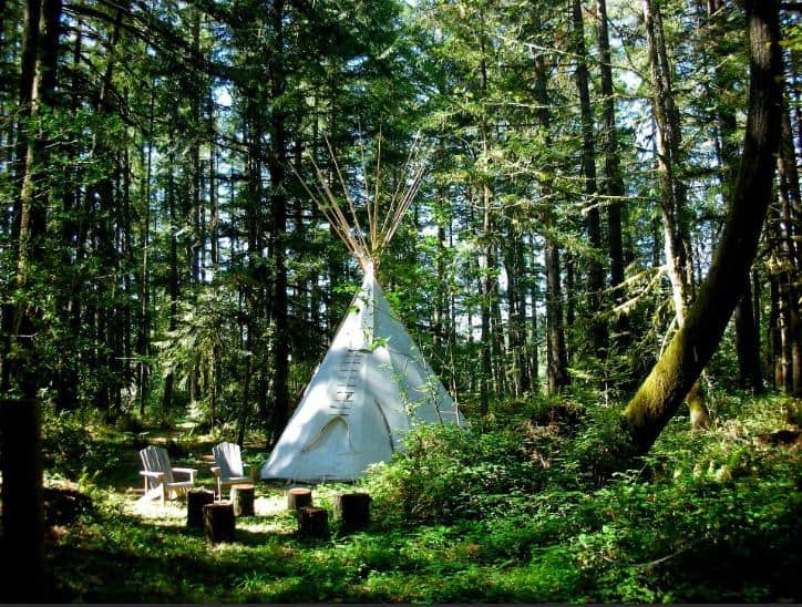 A tipi in the middle of the forest in Tipi Village Retreat.