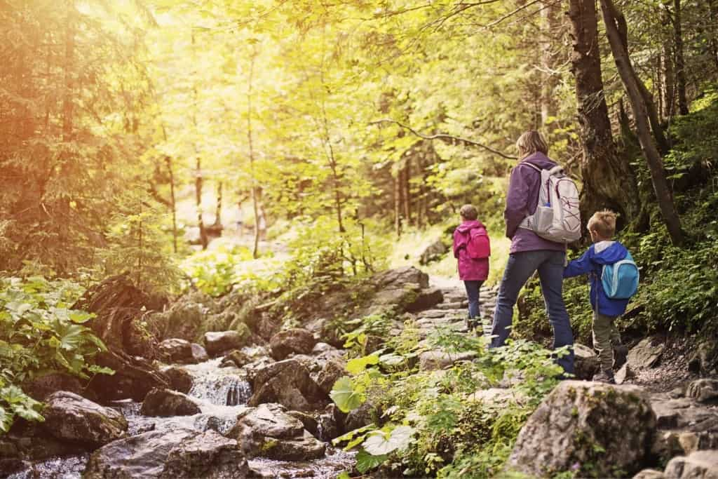 A family hiking along a creek in the forest.