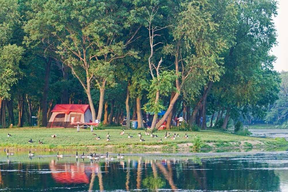 A look at a lakeside Pennsylvania campsite with geese.