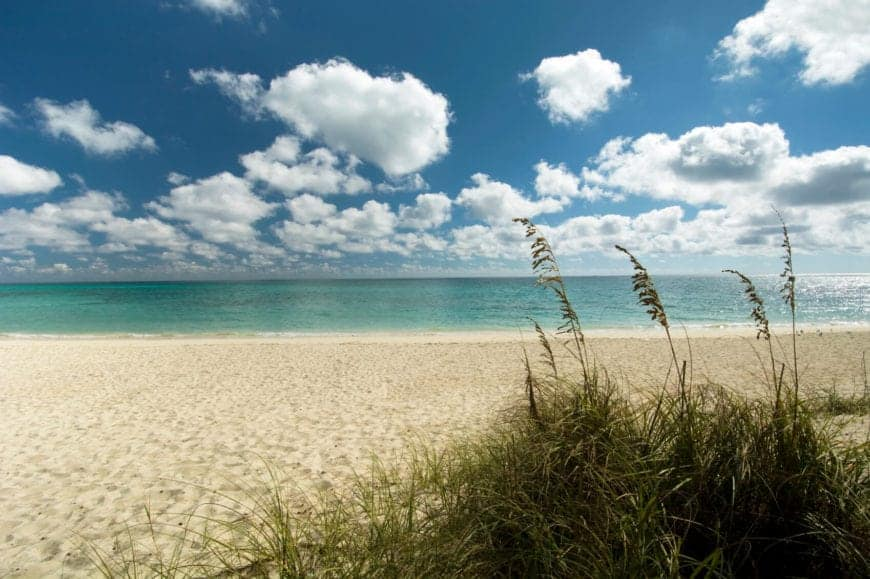 A quiet expanse of the popular resort beach that's usually dotted by palm trees and luxury hotels. This section of white sand beach is surrounded by waving beach grass.