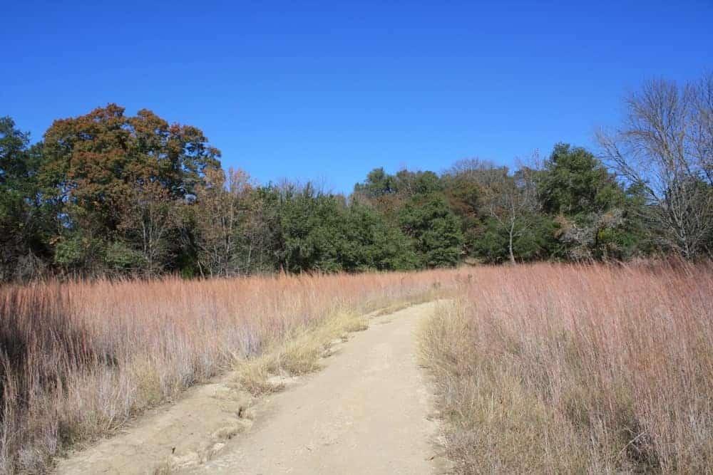 Hiking trail at Eagle Mountain Park, Texas.
