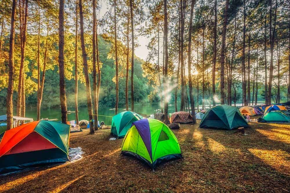 Pitched tents in a forest near a lake.