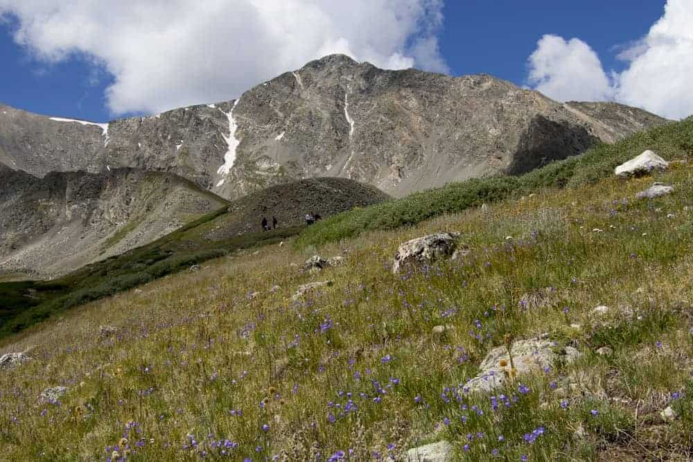 A look at the rocky peak of Grays Peak.