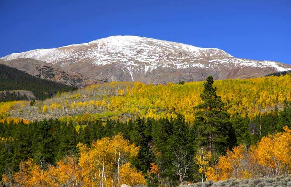 This is a look at the snow-covered Mount Elbert.