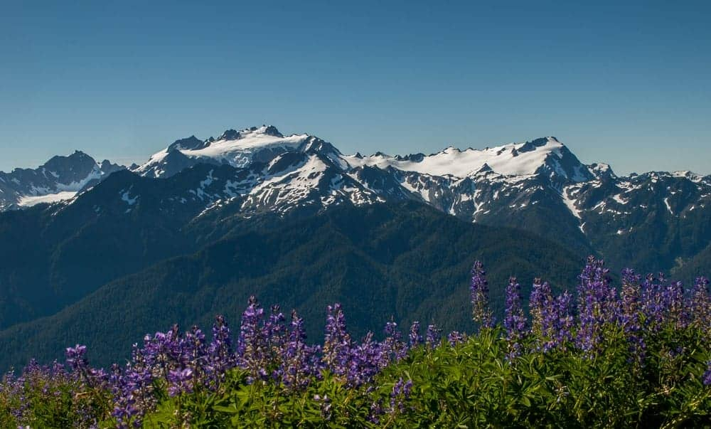 The snow-capped peaks of Mount Olympus seen from afar.
