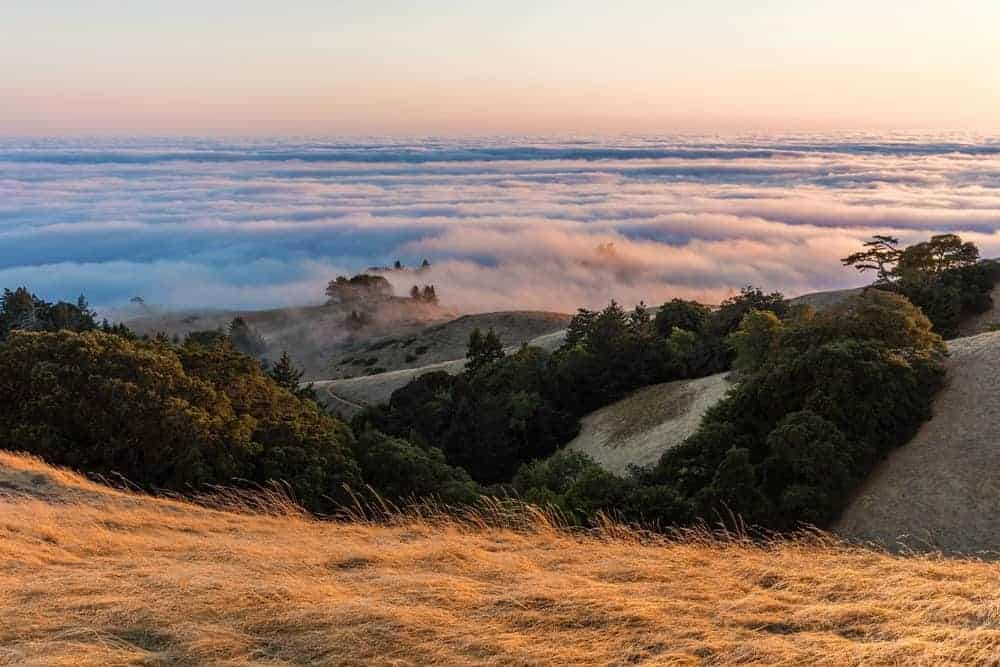 A sea of clouds seen from the peak of Mount Tamalpais State Park.