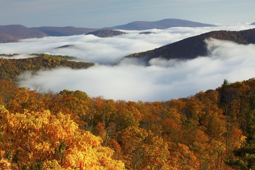 An aerial view of Shenandoah National Park with fall colors.