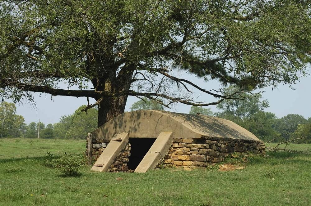 A survival bunker in the field under a tree.