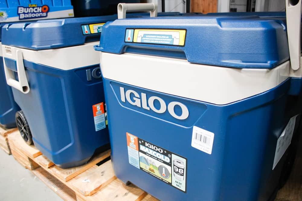 Closeup of large hard plastic coolers on wood planks.