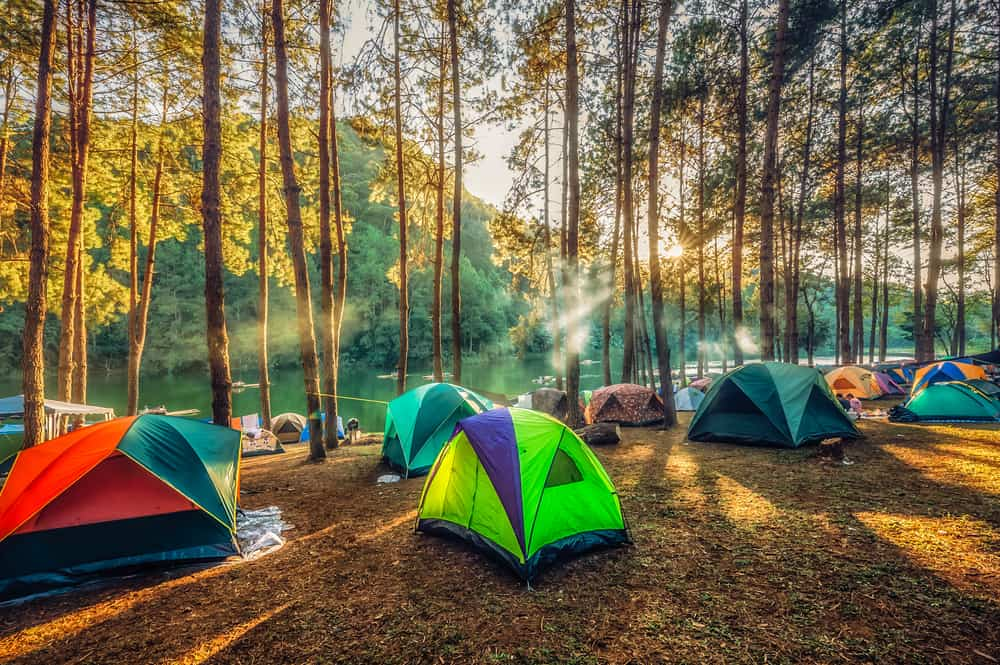 This is a view of multiple colorful tents at a forest camp site.