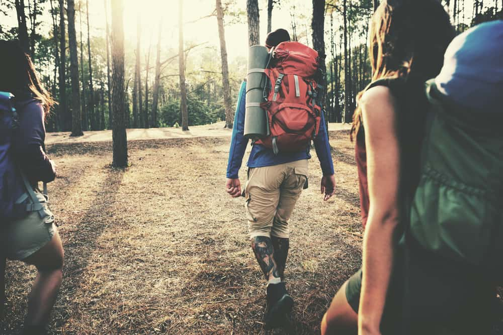 A group of friends hiking through the forest trail carrying backpacks.