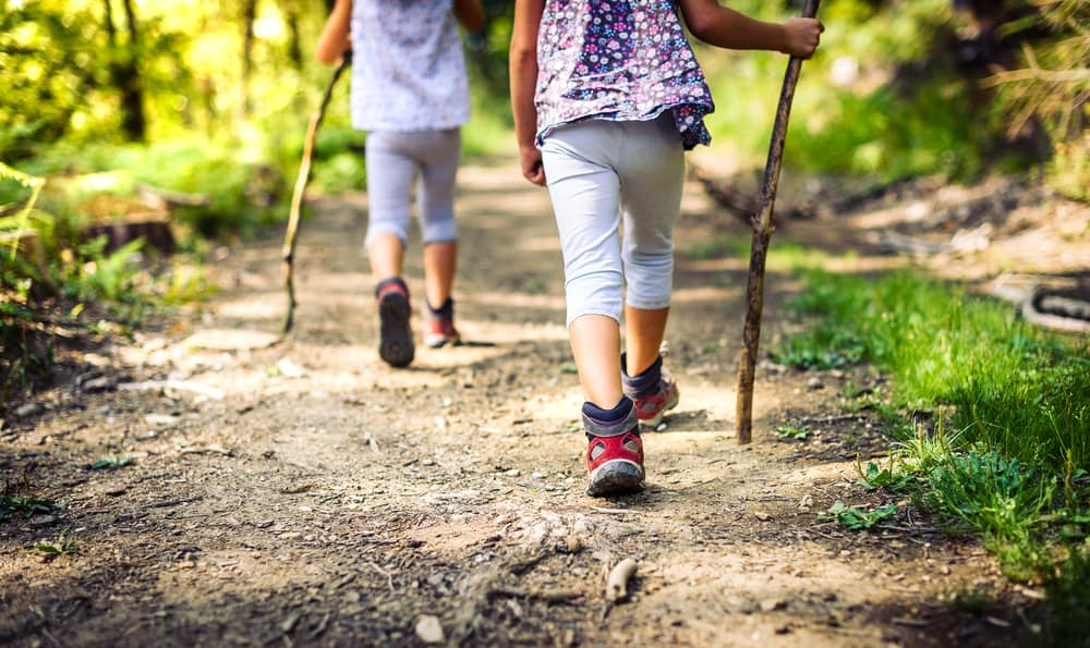 Kids wearing mountain boots hike in forest with their walking sticks.