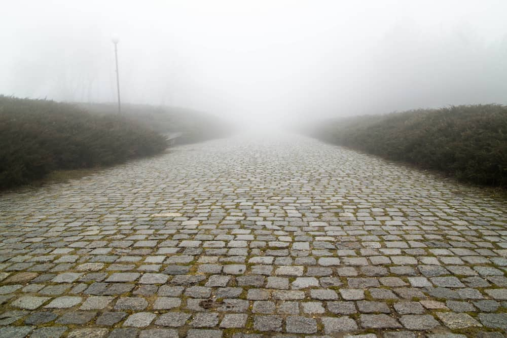 Paving stone road with fog ahead.