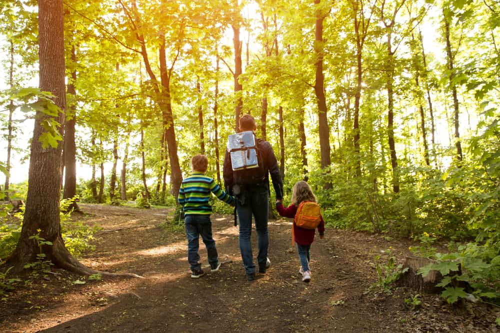 Father holding his kids hands as they hike on a forest trail.